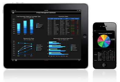 Mobile BI: Dashboards on the Go!
