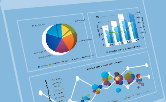 Integrating Customized Reports, Dashboards & Analysis into Your Application