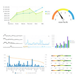Dashboard Software Example